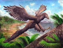 Archaeopteryx-Ferahgo-the-Assassin