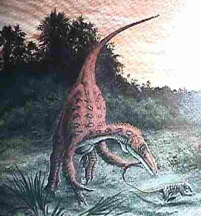 File:Troodon-twoguysfossils.jpg