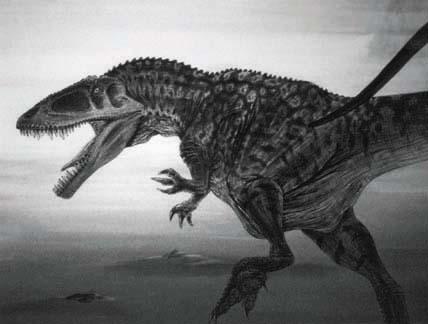 File:Carcharodontosaurus-Todd-Marshall.jpg