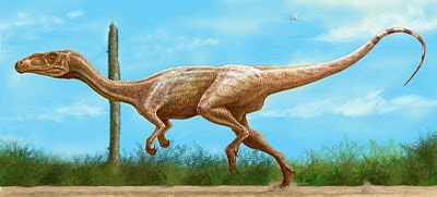 File:Guaibasaurus-4 bp blogspot.jpg