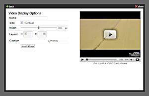 File:VideoEmbedTool.png