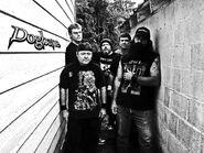 Dogbane bandpic