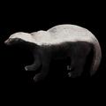 Badger 387c56e032d0a.png