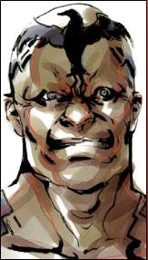 File:Raven face.jpg