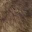 Ddog hair4