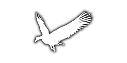 File:Anim GriffonVulture iTPP.png