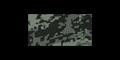 Thumbnail for version as of 20:49, May 12, 2016