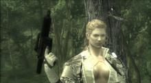 The boss intro cutscene