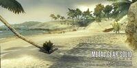 Playa del Alba
