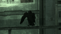 Northern Raven Pic 1 (Metal Gear Solid 4)
