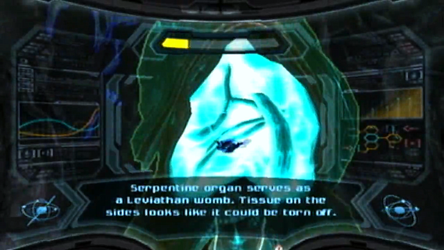 File:Leviathan womb scan.png