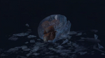 Baby Metroid 2