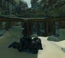 Quarantine Cave