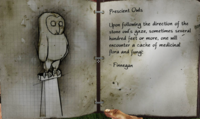 Owl statue notes