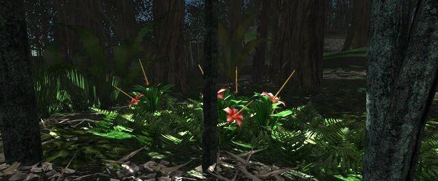 File:Large Jungle flower valley.jpg