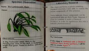 Bio-luminescent algae notes