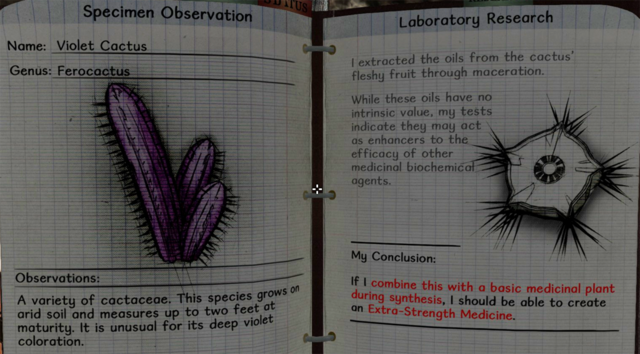 File:Violet cactus notes.png