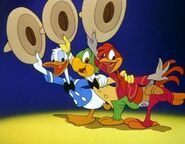 The three caballeros themselves