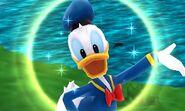 DMW - Donald Duck