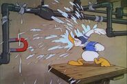 Donald-Duck-Donald-and-Pluto-donald-duck-9562313-720-480