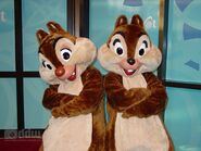 Chip-and-dale-photo