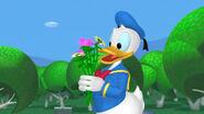 Donald flowers