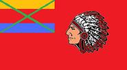 1st State Flag of Seminole