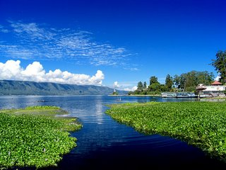File:Toba lake-1-.jpg