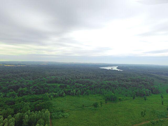 File:Liberlandair.jpg