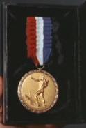 File:Christopher Pike Medal of Valor.png