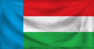 File:Sreegurusiaflag.jpg