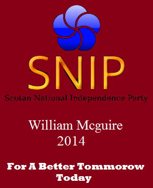 File:SNIP election Poster.png