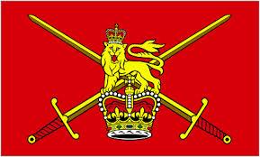 File:Catopian Flag.jpg