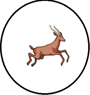 File:Unironic South Africa Badge.png