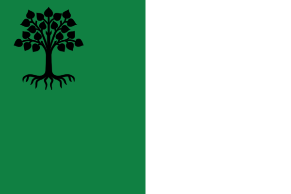 File:New Jera Flag.png