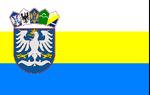 Slevan flag
