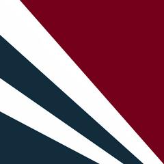 Flag of Exovia
