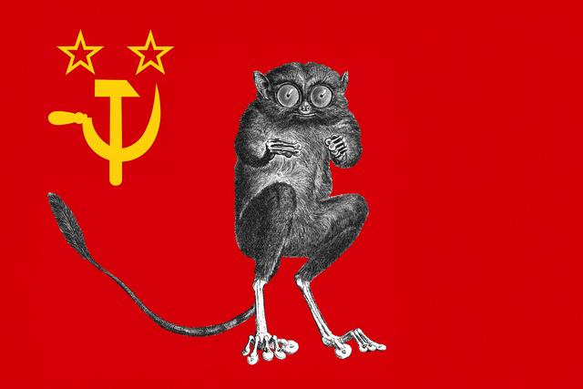 File:CommunistPartyFlag.png