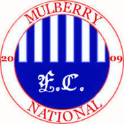 Mulberry fc