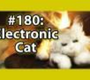 7x014 - Electronic cat