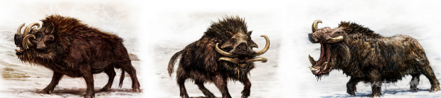 File:Iron Hills Wild War Boars.png