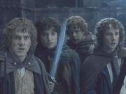 Hobbits in LOTR