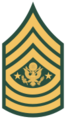 100px-US Army E-9 SMA svg.png
