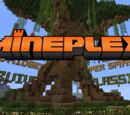 Server-Minecraft