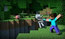 MinecraftSteve