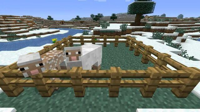 File:Minecraft-11-sheep.jpg