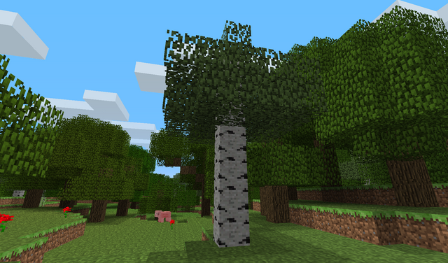 File:Birchtree.png