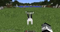 Toastrabbit