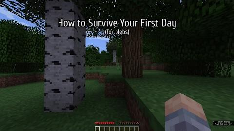 Survival Mode Guide