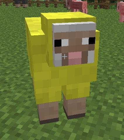 File:Yellow sheep.jpg